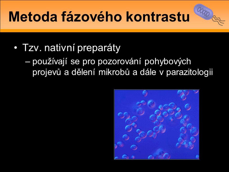 •Tzv. nativní preparáty –používají se pro pozorování pohybových projevů a dělení mikrobů a dále v parazitologii Metoda fázového kontrastu