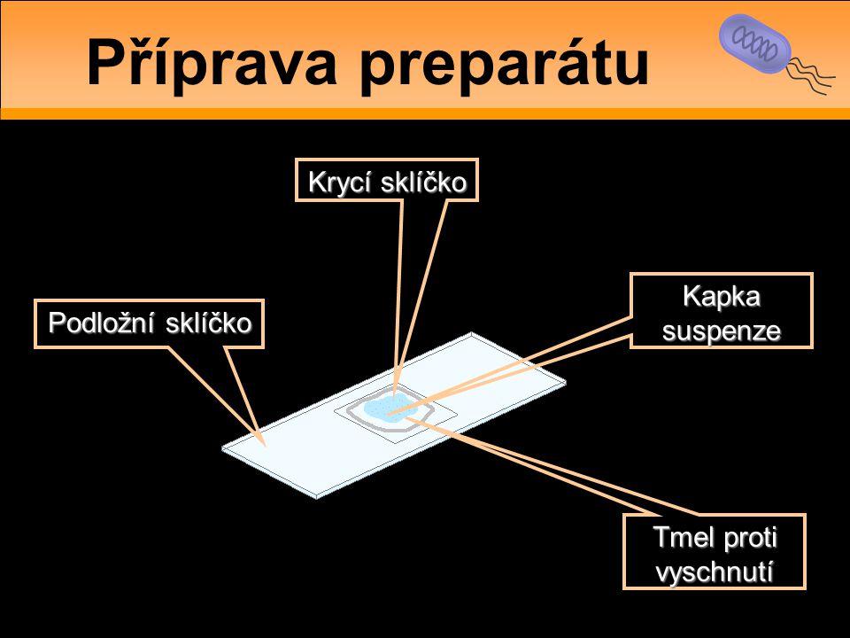 Podložní sklíčko Krycí sklíčko Kapka suspenze Tmel proti vyschnutí Příprava preparátu