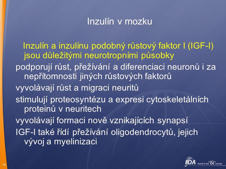 10 Inzulín v mozku Inzulín a inzulínu podobný růstový faktor I (IGF-I) jsou důležitými neurotropními působky podporují růst, přežívání a diferenciaci