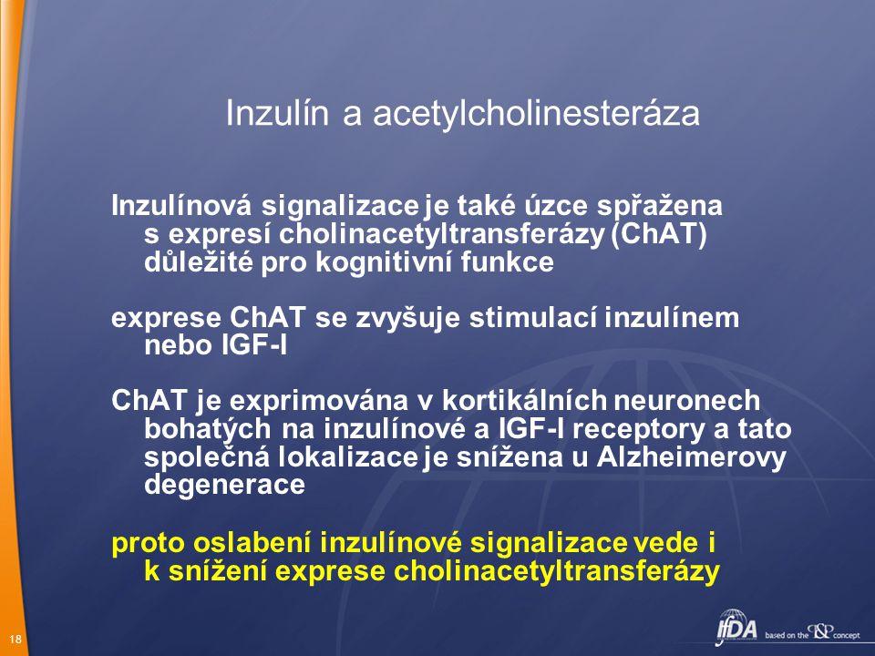 18 Inzulín a acetylcholinesteráza Inzulínová signalizace je také úzce spřažena s expresí cholinacetyltransferázy (ChAT) důležité pro kognitivní funkce