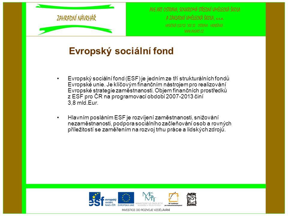 Evropský sociální fond •Evropský sociální fond (ESF) je jedním ze tří strukturálních fondů Evropské unie. Je klíčovým finančním nástrojem pro realizov
