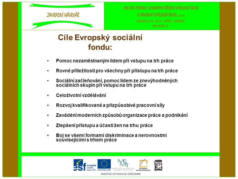 Cíle Evropský sociální fondu: •Pomoc nezaměstnaným lidem při vstupu na trh práce •Rovné příležitosti pro všechny při přístupu na trh práce •Sociální začleňování, pomoc lidem ze znevýhodněných sociálních skupin při vstupu na trh práce •Celoživotní vzdělávání •Rozvoj kvalifikované a přizpůsobivé pracovní síly •Zavádění moderních způsobů organizace práce a podnikání •Zlepšení přístupu a účasti žen na trhu práce •Boj se všemi formami diskriminace a nerovnostmi souvisejícími s trhem práce