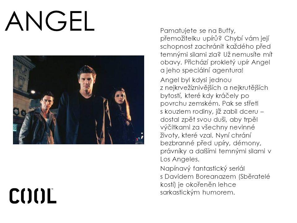 ANGEL Pamatujete se na Buffy, přemožitelku upírů.