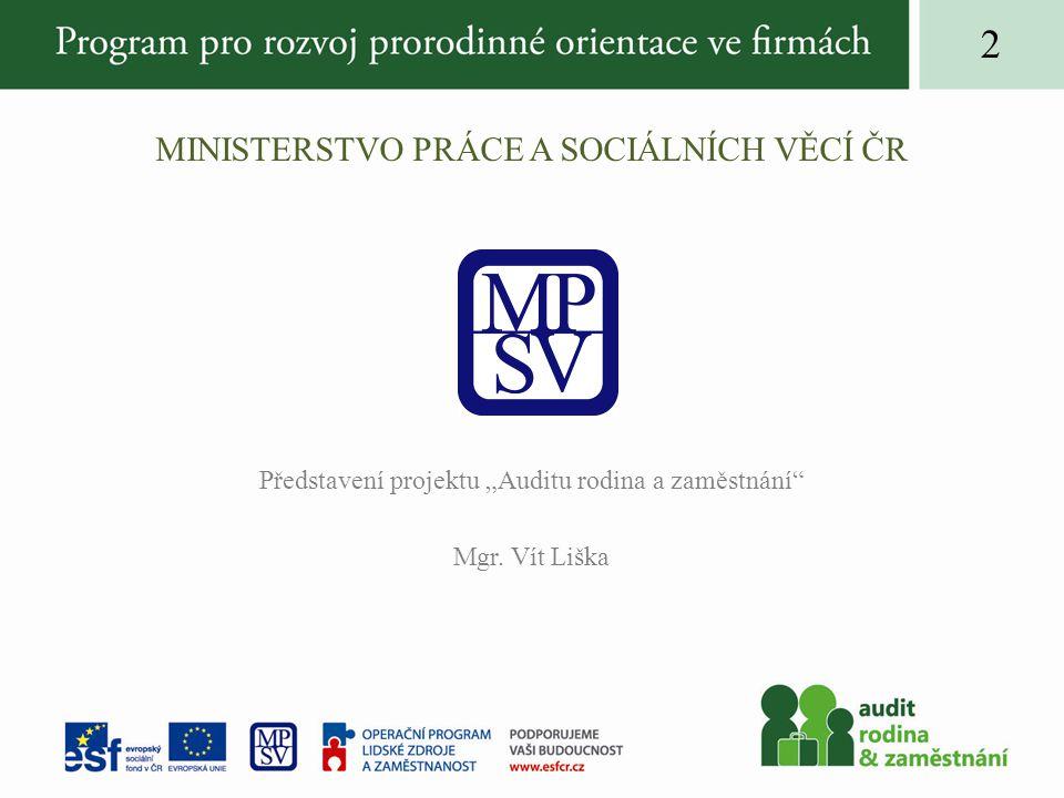 """MINISTERSTVO PRÁCE A SOCIÁLNÍCH VĚCÍ ČR Představení projektu """"Auditu rodina a zaměstnání"""" Mgr. Vít Liška 2"""