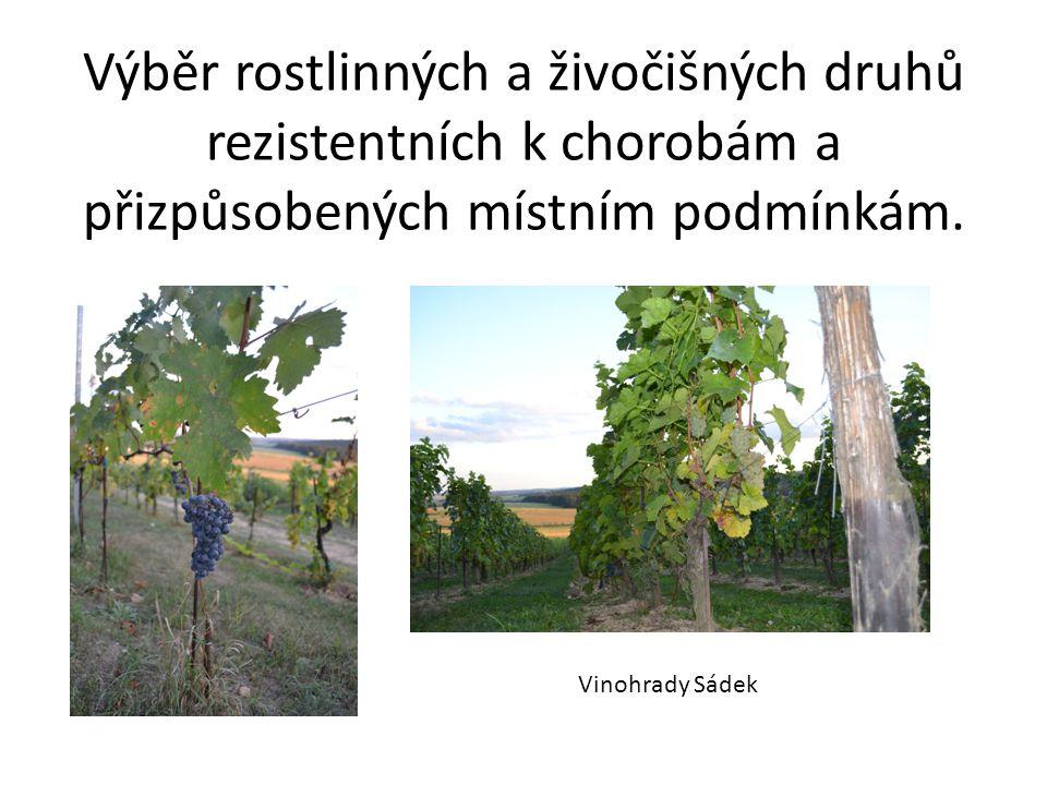 Výběr rostlinných a živočišných druhů rezistentních k chorobám a přizpůsobených místním podmínkám.