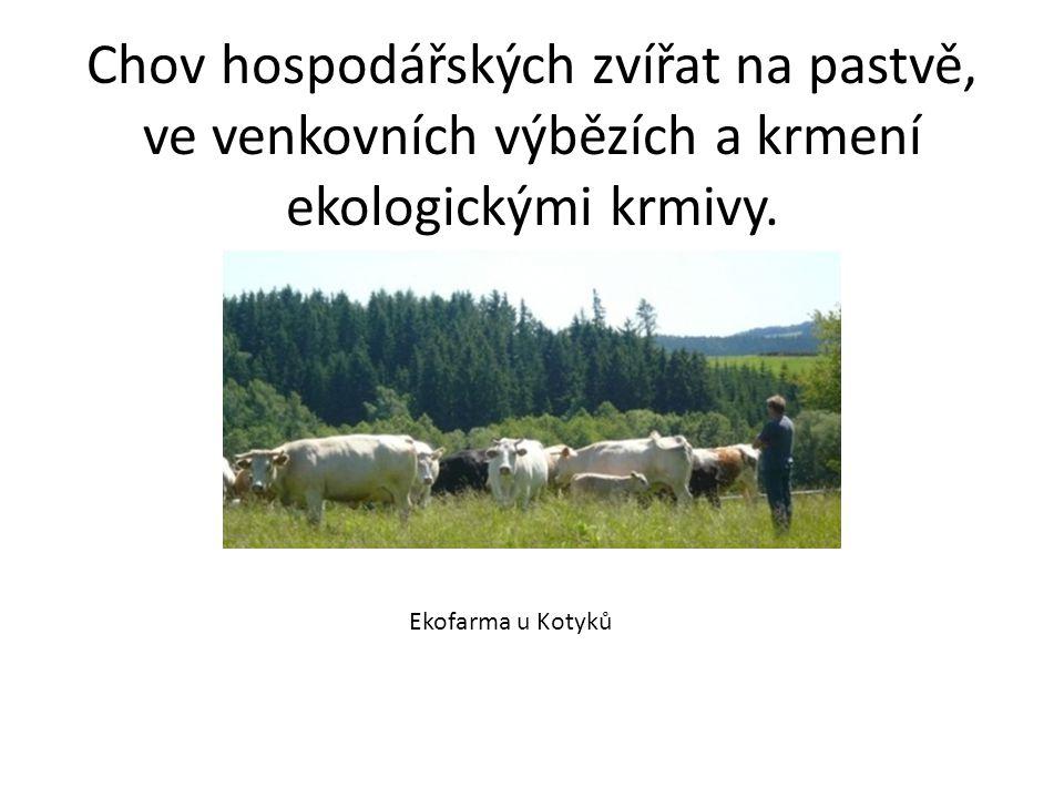Chov hospodářských zvířat na pastvě, ve venkovních výbězích a krmení ekologickými krmivy.