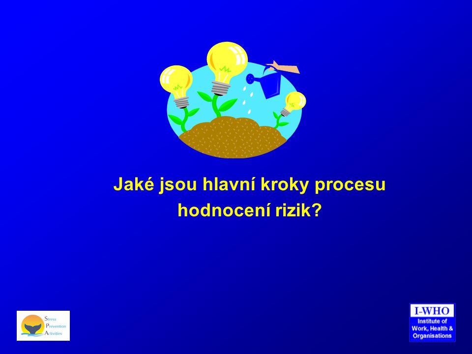 Jaké jsou hlavní kroky procesu hodnocení rizik?