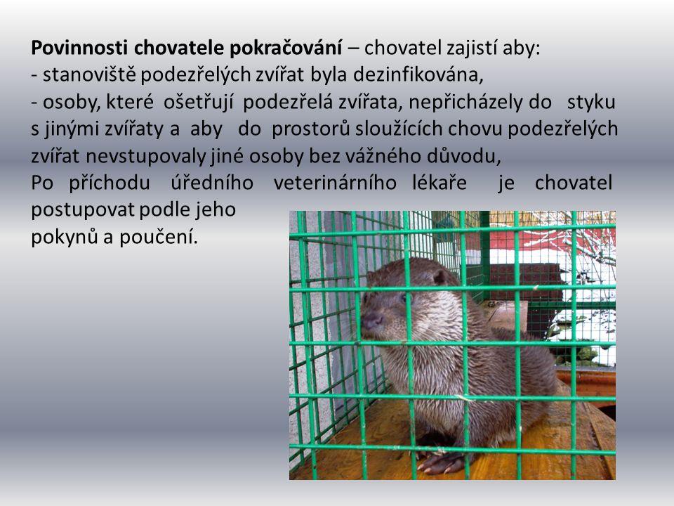 Povinnosti chovatele pokračování – chovatel zajistí aby: - stanoviště podezřelých zvířat byla dezinfikována, - osoby, které ošetřují podezřelá zvířata