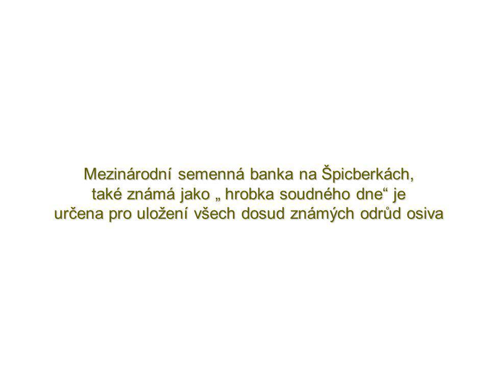 """Mezinárodní semenná banka na Špicberkách, také známá jako """" hrobka soudného dne je určena pro uložení všech dosud známých odrůd osiva"""