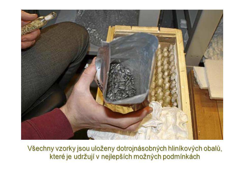 Techniciklasifikují u každého vzorku druh,původ a stáří.