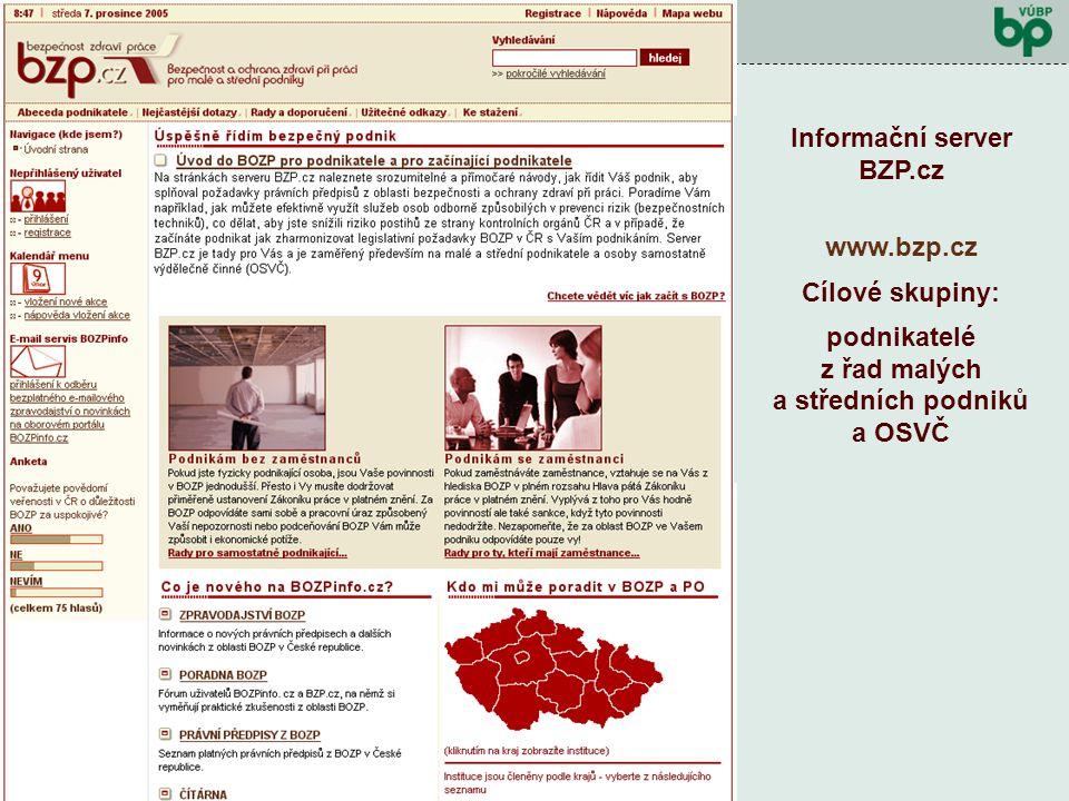 Výzkumný záměr 2004 - 2010 Kontrolní den prosinec 2006 Předcházet pracovním rizikům !!!! … a proto vznikl server BZP.cz Jaký je záměr projektu? Vytvoř