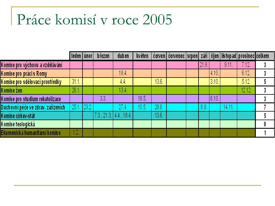Práce komisí v roce 2005