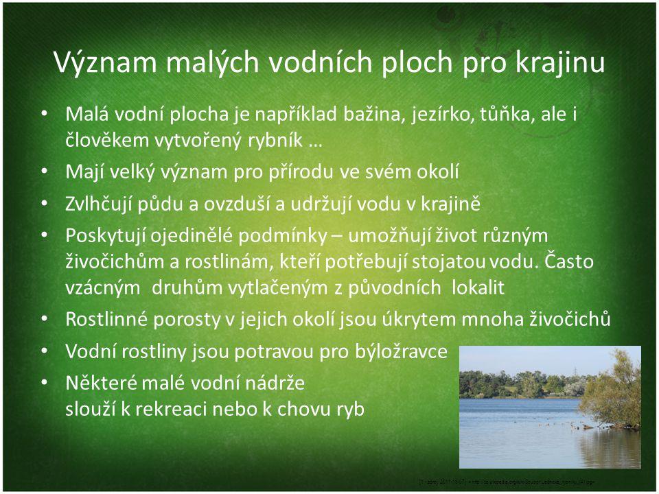 Význam malých vodních ploch pro krajinu • Malá vodní plocha je například bažina, jezírko, tůňka, ale i člověkem vytvořený rybník … • Mají velký význam