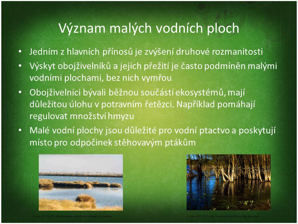 Význam malých vodních ploch • Jedním z hlavních přínosů je zvýšení druhové rozmanitosti • Výskyt obojživelníků a jejich přežití je často podmíněn malý