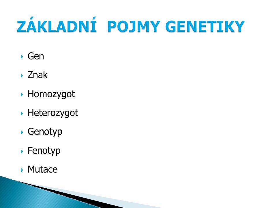  Gen  Znak  Homozygot  Heterozygot  Genotyp  Fenotyp  Mutace