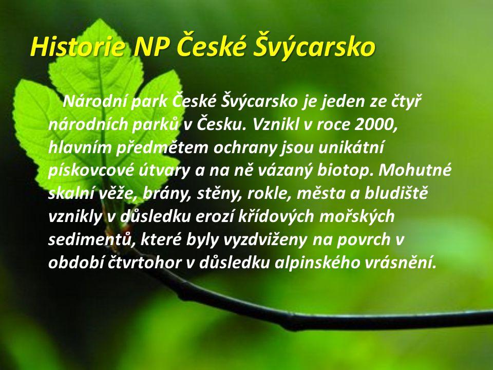 Historie NP České Švýcarsko Národní park České Švýcarsko je jeden ze čtyř národních parků v Česku. Vznikl v roce 2000, hlavním předmětem ochrany jsou