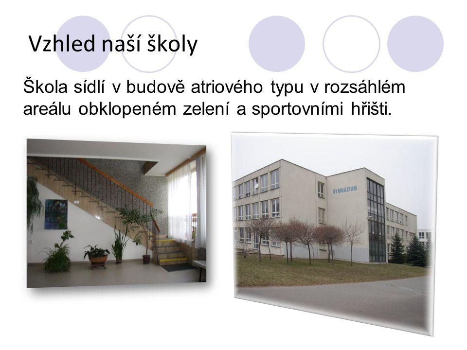 Organizační schéma Ředitelka školy RNDr.Helena Štěrbová Zástupkyně RNDr.