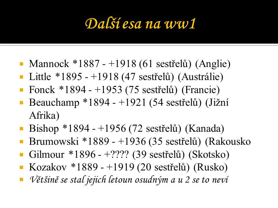  Mannock *1887 - +1918 (61 sestřelů) (Anglie)  Little *1895 - +1918 (47 sestřelů) (Austrálie)  Fonck *1894 - +1953 (75 sestřelů) (Francie)  Beauch