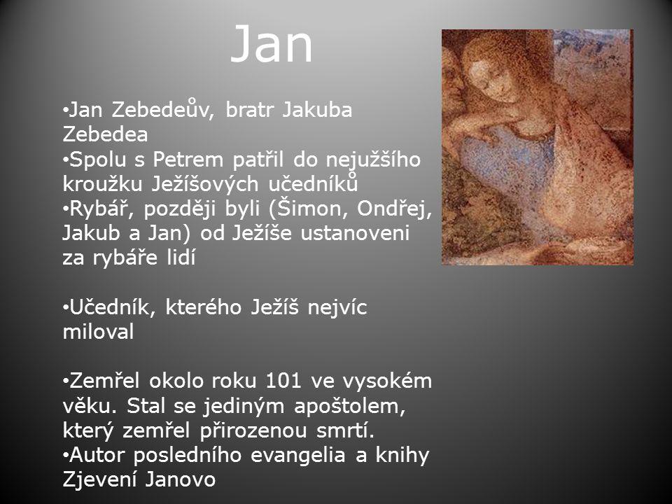 Jan • Jan Zebedeův, bratr Jakuba Zebedea • Spolu s Petrem patřil do nejužšího kroužku Ježíšových učedníků • Rybář, později byli (Šimon, Ondřej, Jakub a Jan) od Ježíše ustanoveni za rybáře lidí • Učedník, kterého Ježíš nejvíc miloval • Zemřel okolo roku 101 ve vysokém věku.