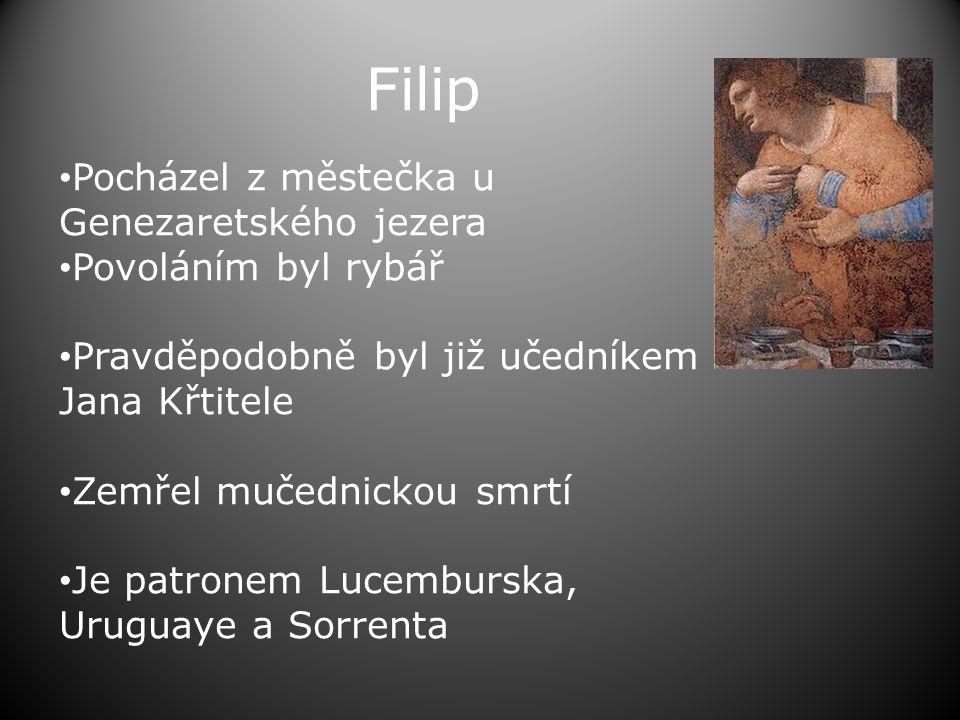 Filip • Pocházel z městečka u Genezaretského jezera • Povoláním byl rybář • Pravděpodobně byl již učedníkem Jana Křtitele • Zemřel mučednickou smrtí • Je patronem Lucemburska, Uruguaye a Sorrenta