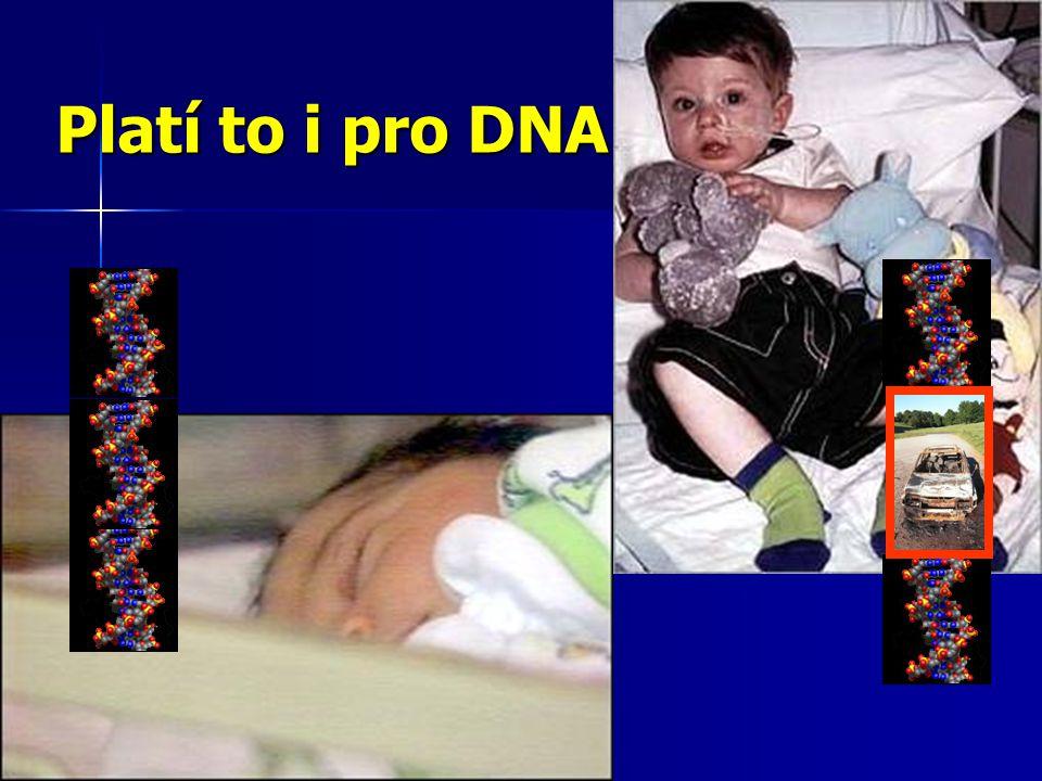 Platí to i pro DNA