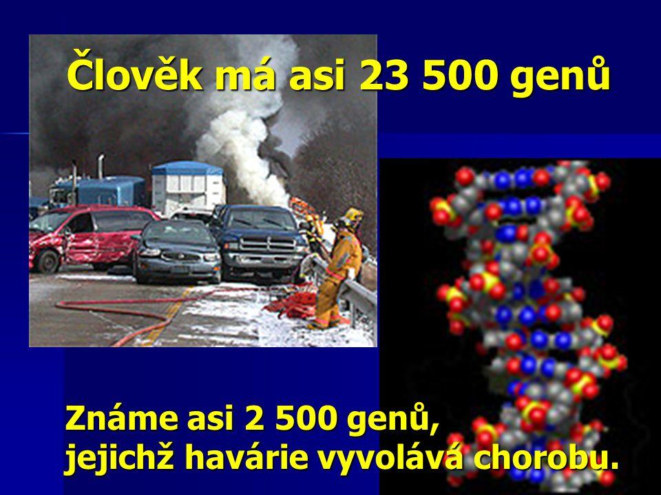 Člověk má asi 23 500 genů Známe asi 2 500 genů, jejichž havárie vyvolává chorobu.