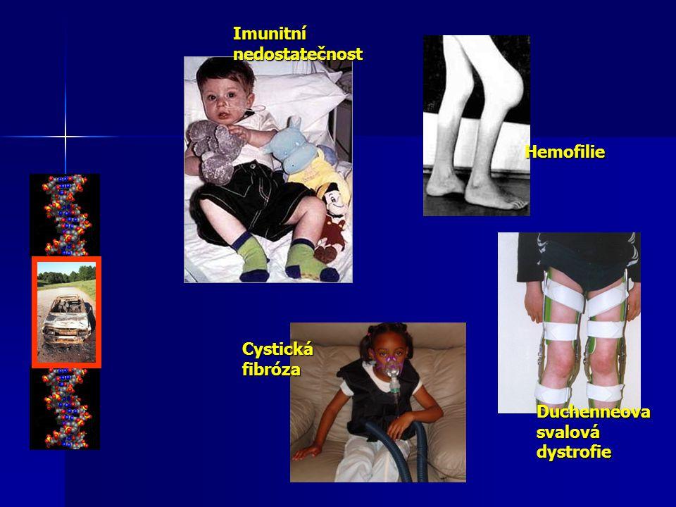 Imunitnínedostatečnost Hemofilie Duchenneovasvalovádystrofie Cystickáfibróza