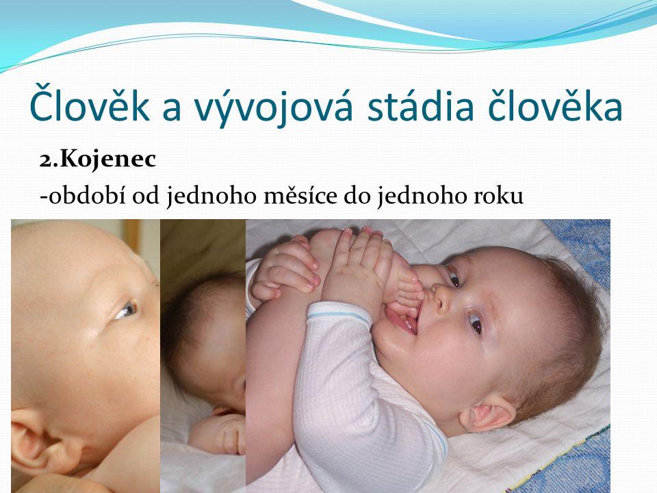 Člověk a vývojová stádia člověka 2.Kojenec -období od jednoho měsíce do jednoho roku