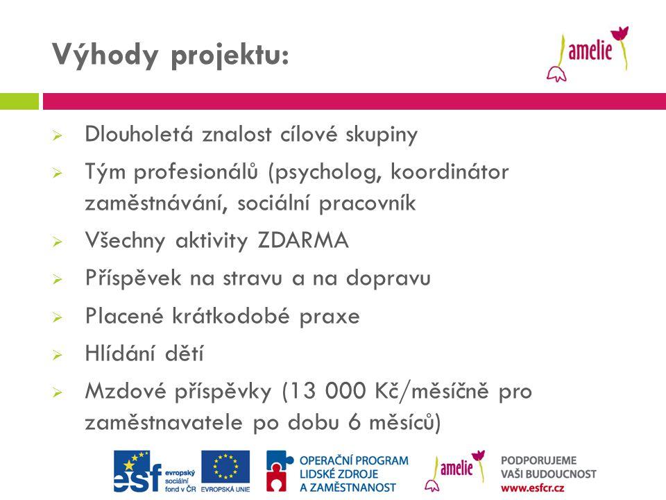 Výhody projektu:  Dlouholetá znalost cílové skupiny  Tým profesionálů (psycholog, koordinátor zaměstnávání, sociální pracovník  Všechny aktivity ZD