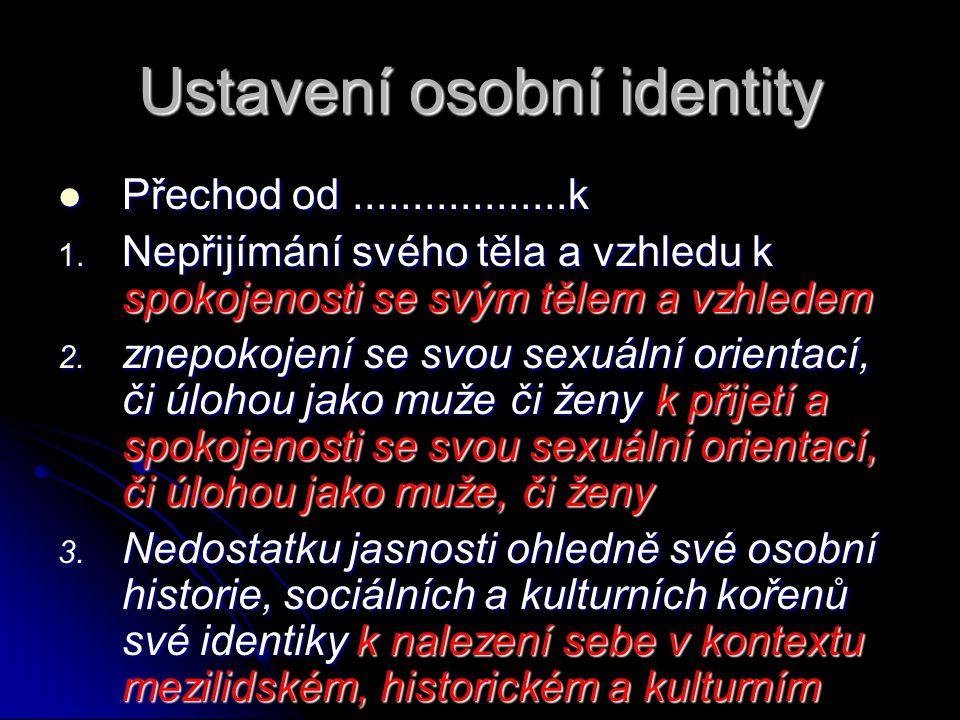 Ustavení osobní identity  Přechod od..................k 1. Nepřijímání svého těla a vzhledu k spokojenosti se svým tělem a vzhledem 2. znepokojení se