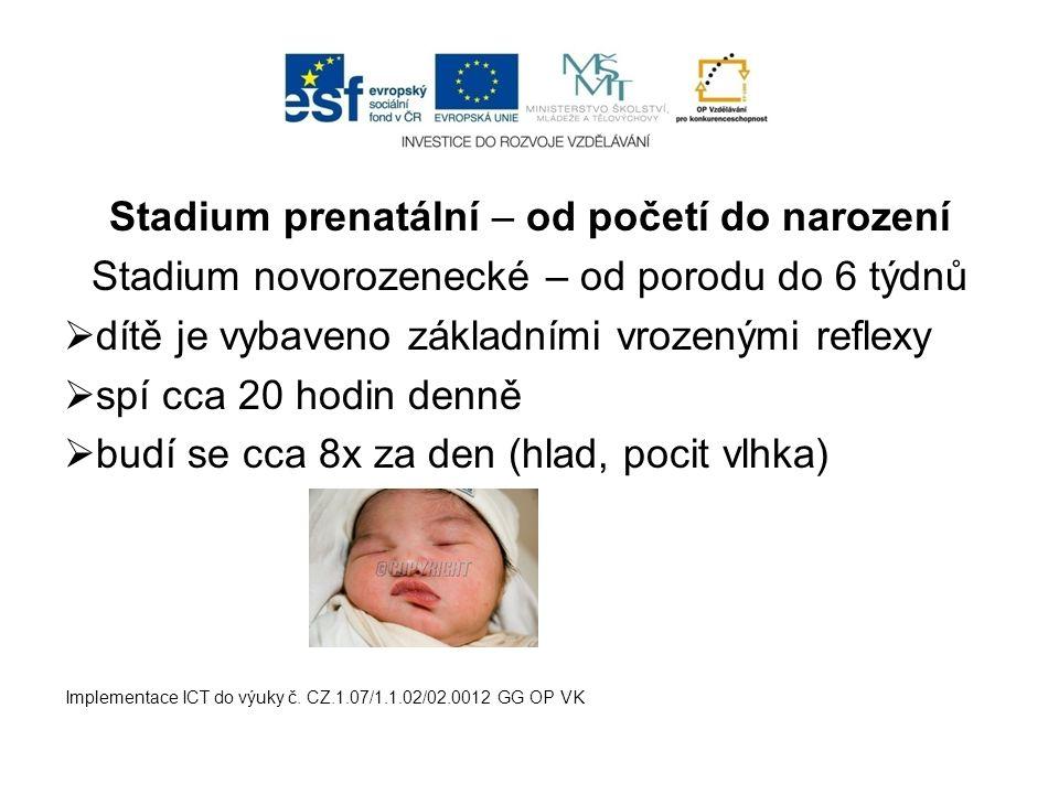 Stadium prenatální – od početí do narození Stadium novorozenecké – od porodu do 6 týdnů  dítě je vybaveno základními vrozenými reflexy  spí cca 20 h