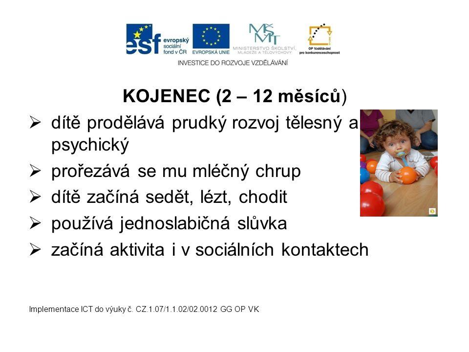 KOJENEC (2 – 12 měsíců)  dítě prodělává prudký rozvoj tělesný a psychický  prořezává se mu mléčný chrup  dítě začíná sedět, lézt, chodit  používá