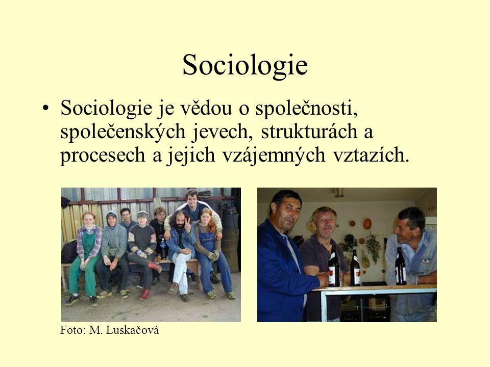 Sociologie •Sociologie je vědou o společnosti, společenských jevech, strukturách a procesech a jejich vzájemných vztazích. Foto: M. Luskačová