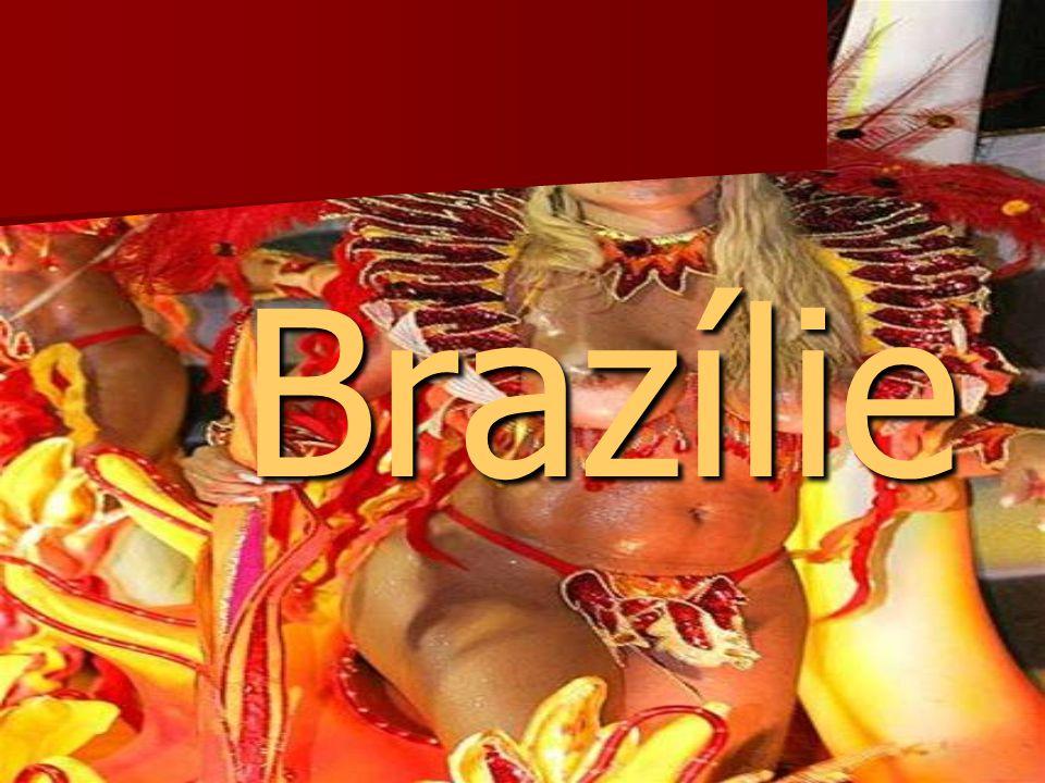 Podnebí  různé klimatické prostředí v jednotlivých regionech  celkové klima Brazílie je tropické  průměrné ročními teploty přes 22 stupňů Celsia   5 podnebných pásem: velmi vlhké rovníkové klima, tropické klima, suché severovýchodní klima, tropické klima náhorních rovin, subtropické klima
