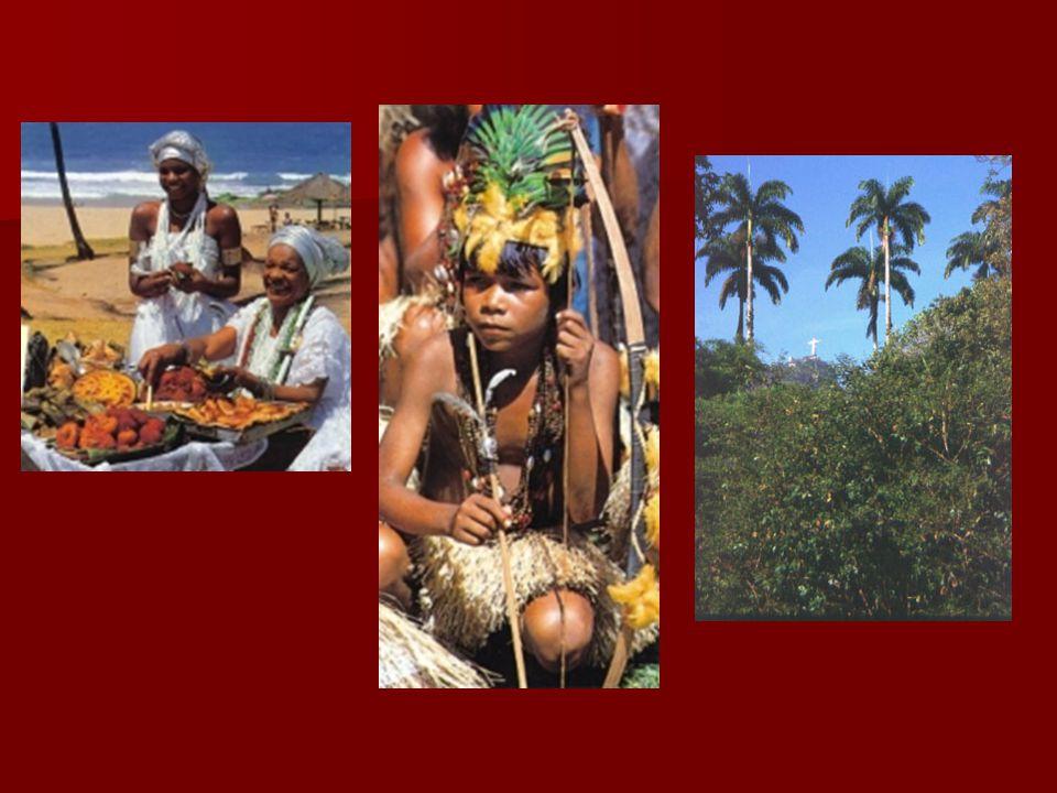 Hospodářství  vyvíjelo se s vývozem zboží(dřevo, cukr, zlato, diamanty)  v 19.st.