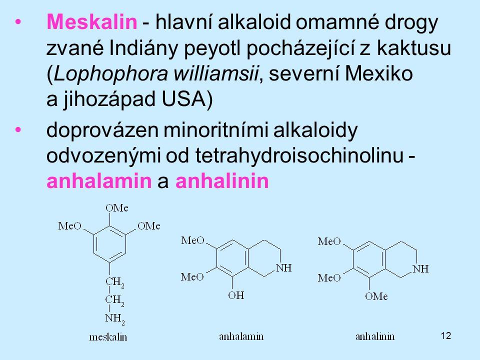 12 •Meskalin - hlavní alkaloid omamné drogy zvané Indiány peyotl pocházející z kaktusu (Lophophora williamsii, severní Mexiko a jihozápad USA) •doprov