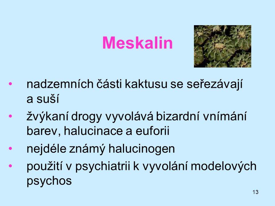 13 Meskalin •nadzemních části kaktusu se seřezávají a suší •žvýkaní drogy vyvolává bizardní vnímání barev, halucinace a euforii •nejdéle známý halucin