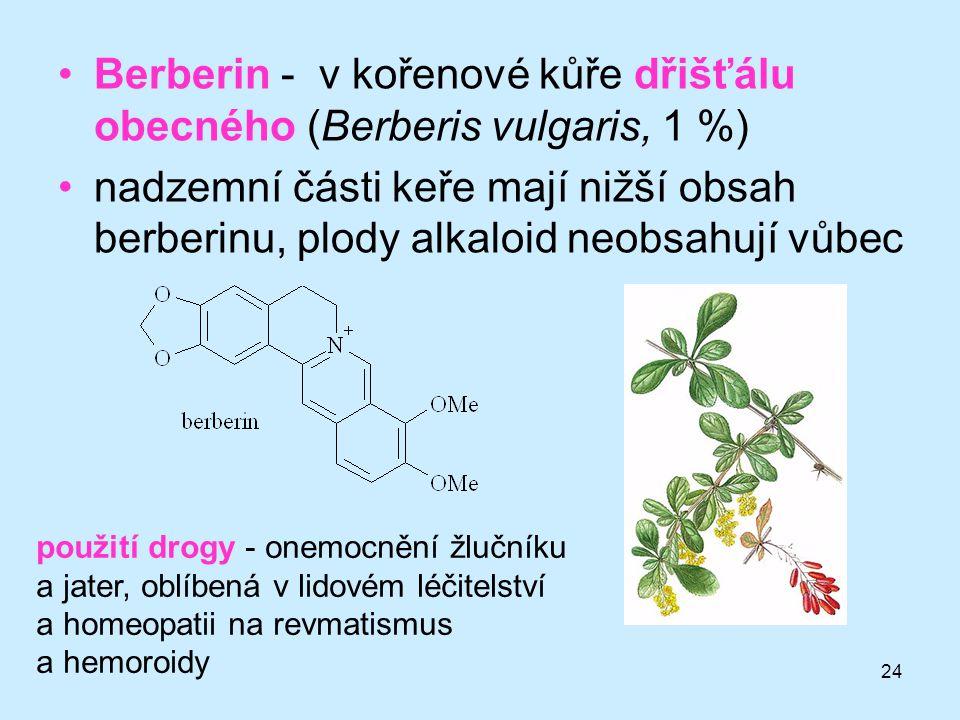24 •Berberin - v kořenové kůře dřišťálu obecného (Berberis vulgaris, 1 %) •nadzemní části keře mají nižší obsah berberinu, plody alkaloid neobsahují v