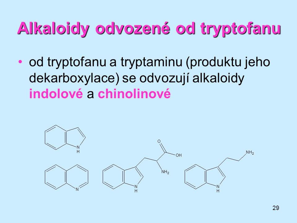 29 Alkaloidyodvozenéodtryptofanu Alkaloidy odvozené od tryptofanu •od tryptofanu a tryptaminu (produktu jeho dekarboxylace) se odvozují alkaloidy indo