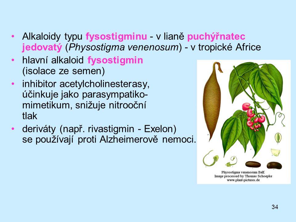 34 •Alkaloidy typu fysostigminu - v lianě puchýřnatec jedovatý (Physostigma venenosum) - v tropické Africe •hlavní alkaloid fysostigmin (isolace ze se