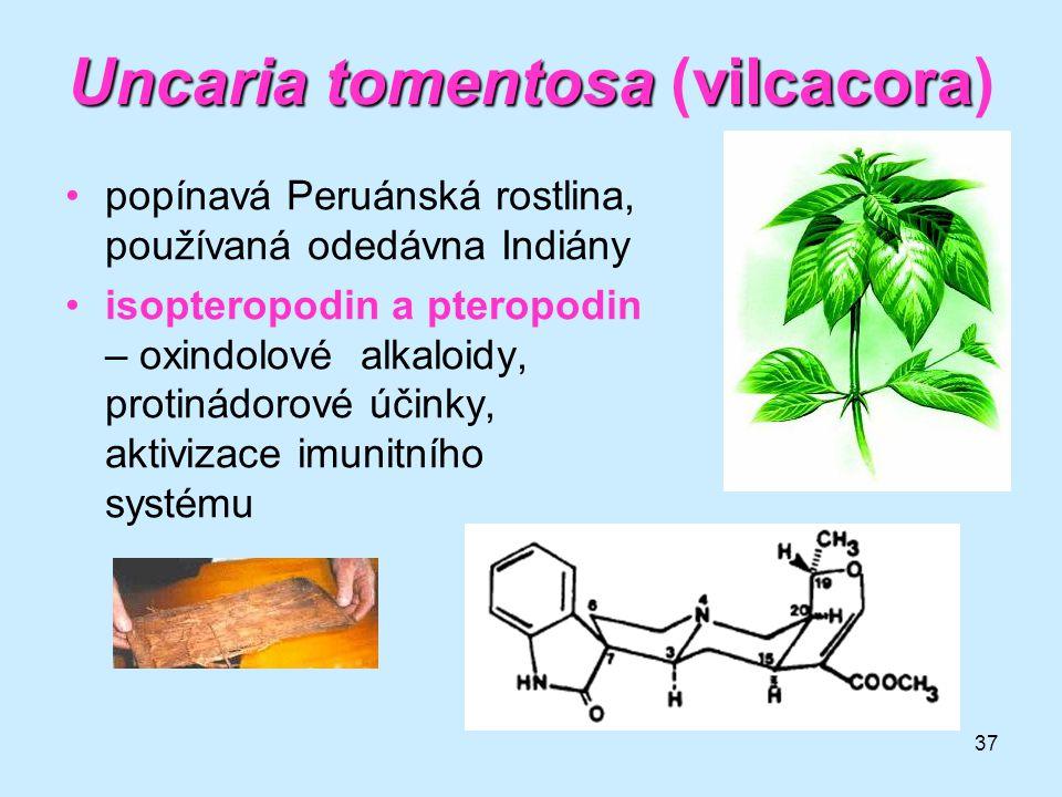 37 •popínavá Peruánská rostlina, používaná odedávna Indiány •isopteropodin a pteropodin – oxindolové alkaloidy, protinádorové účinky, aktivizace imuni