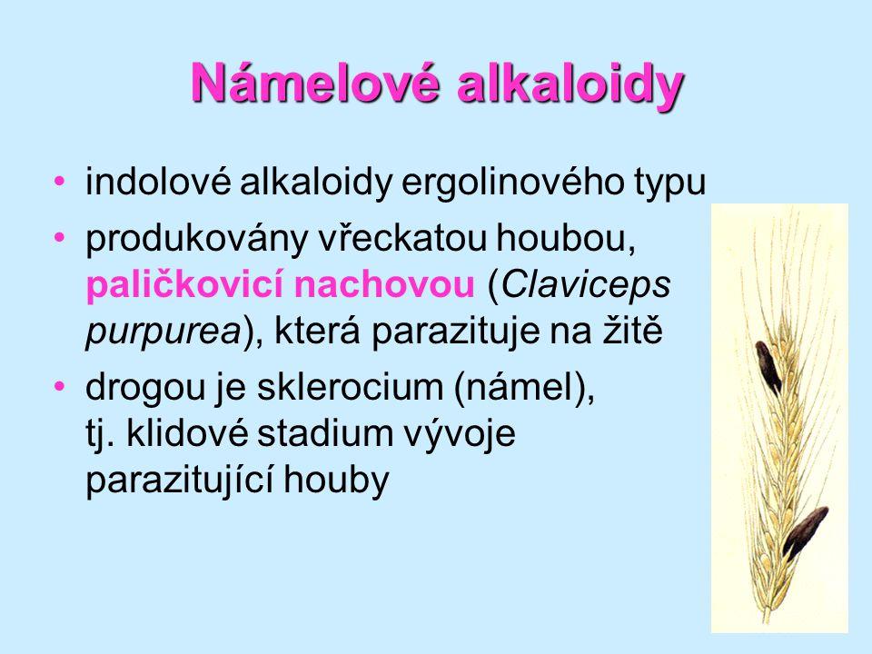 39 Námelovéalkaloidy Námelové alkaloidy •indolové alkaloidy ergolinového typu •produkovány vřeckatou houbou, paličkovicí nachovou (Claviceps purpurea)