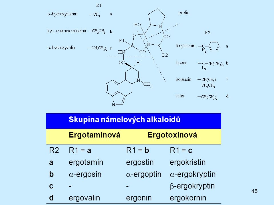 45 Skupina námelových alkaloidů ErgotaminováErgotoxinová R2R1 = aR1 = bR1 = c aergotaminergostinergokristin b  -ergosin  -ergoptin  -ergokryptin c-