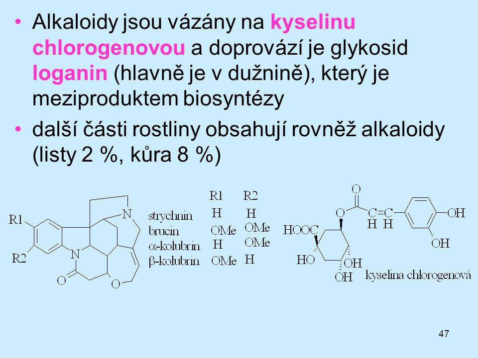 47 •Alkaloidy jsou vázány na kyselinu chlorogenovou a doprovází je glykosid loganin (hlavně je v dužnině), který je meziproduktem biosyntézy •další čá