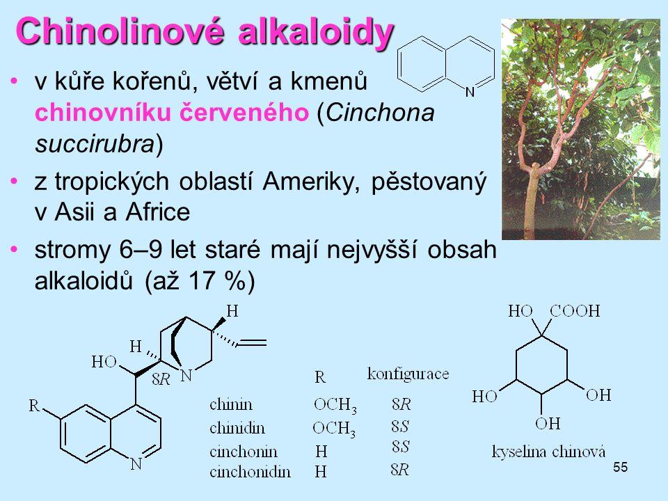 55 Chinolinovéalkaloidy Chinolinové alkaloidy •v kůře kořenů, větví a kmenů chinovníku červeného (Cinchona succirubra) •z tropických oblastí Ameriky,