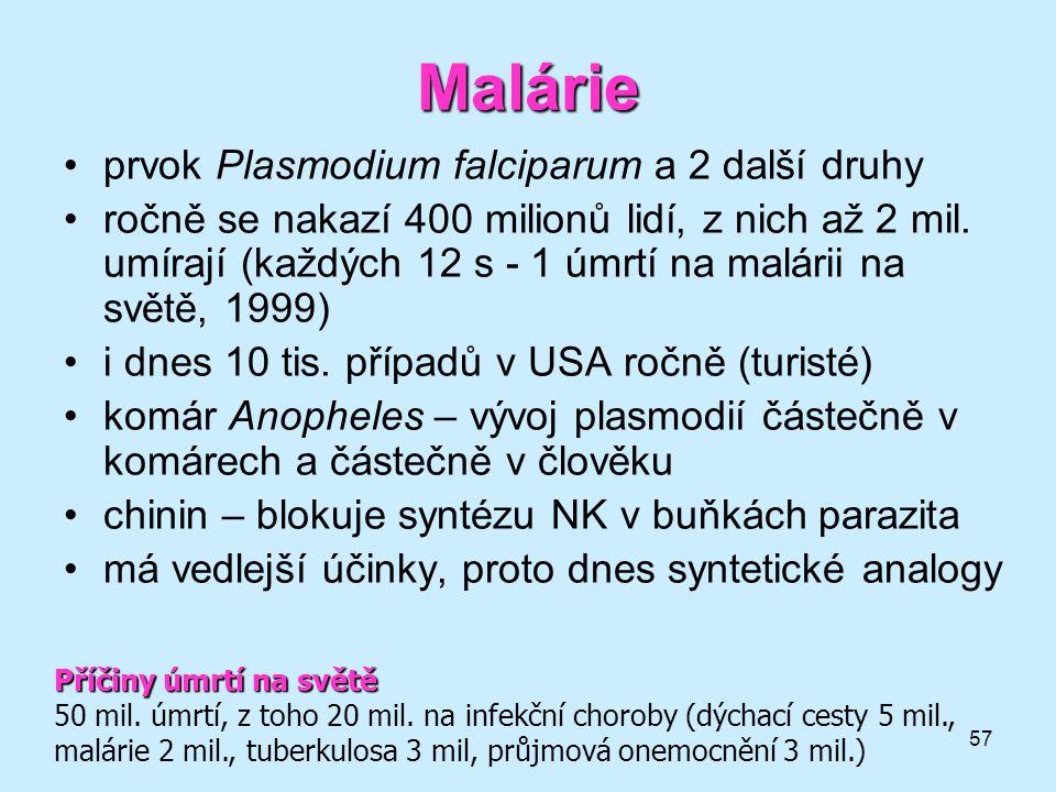 57 Malárie •prvok Plasmodium falciparum a 2 další druhy •ročně se nakazí 400 milionů lidí, z nich až 2 mil. umírají (každých 12 s - 1 úmrtí na malárii