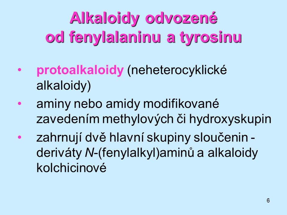 6 Alkaloidy odvozené od fenylalaninu a tyrosinu •protoalkaloidy (neheterocyklické alkaloidy) •aminy nebo amidy modifikované zavedením methylových či h
