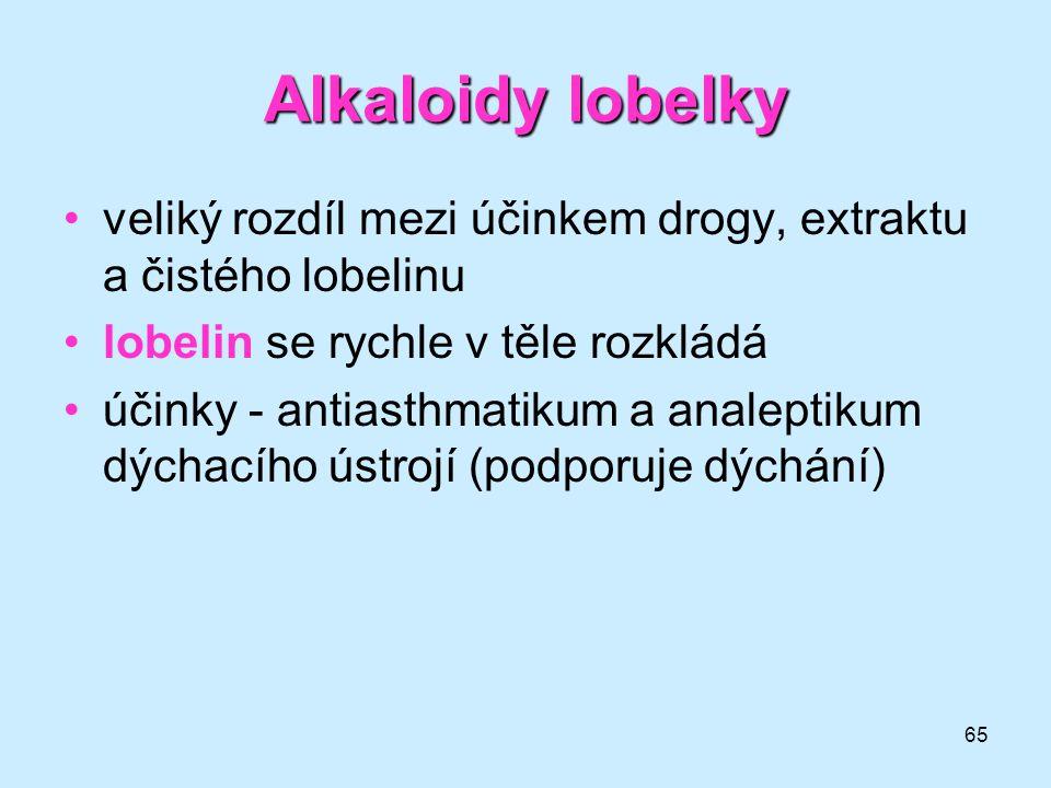 65 Alkaloidy lobelky •veliký rozdíl mezi účinkem drogy, extraktu a čistého lobelinu •lobelin se rychle v těle rozkládá •účinky - antiasthmatikum a ana