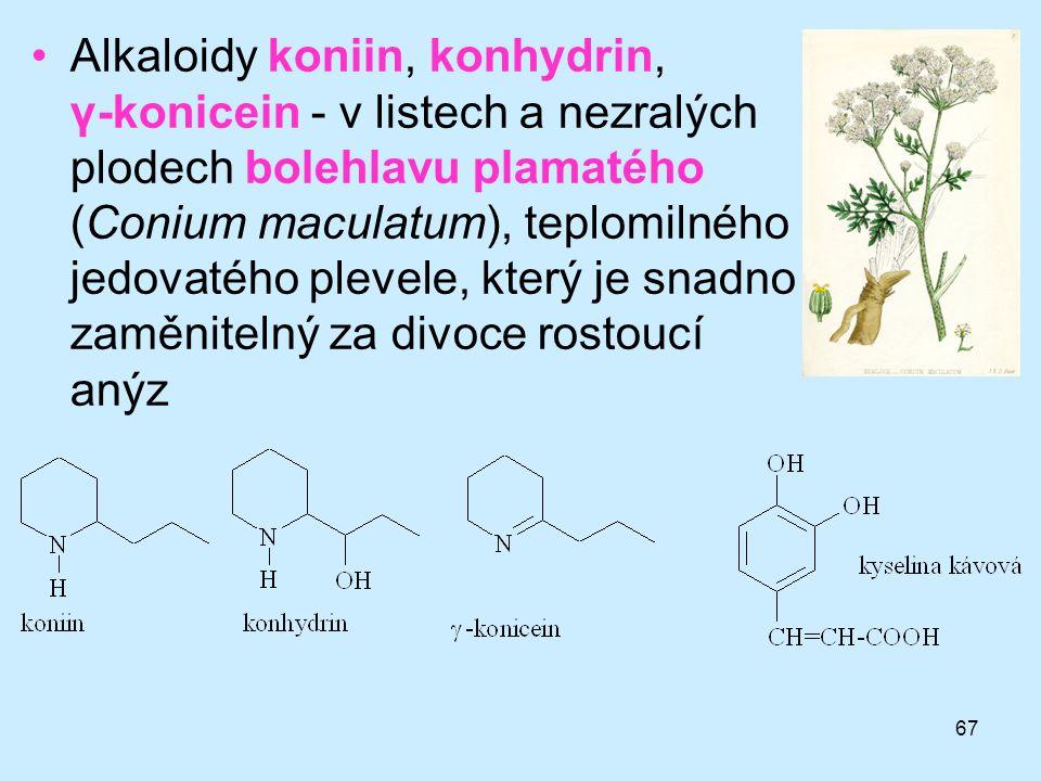 67 •Alkaloidy koniin, konhydrin, γ-konicein - v listech a nezralých plodech bolehlavu plamatého (Conium maculatum), teplomilného jedovatého plevele, k