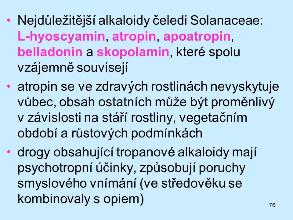 76 •Nejdůležitější alkaloidy čeledi Solanaceae: L-hyoscyamin, atropin, apoatropin, belladonin a skopolamin, které spolu vzájemně souvisejí •atropin se
